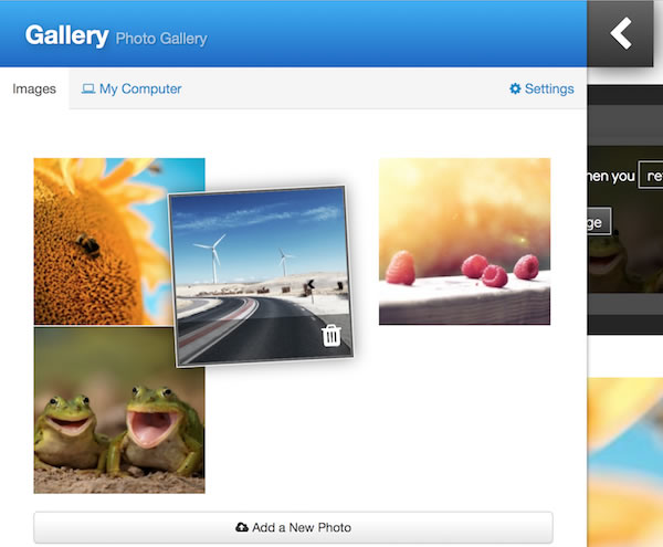 sitebuilder photo gallery